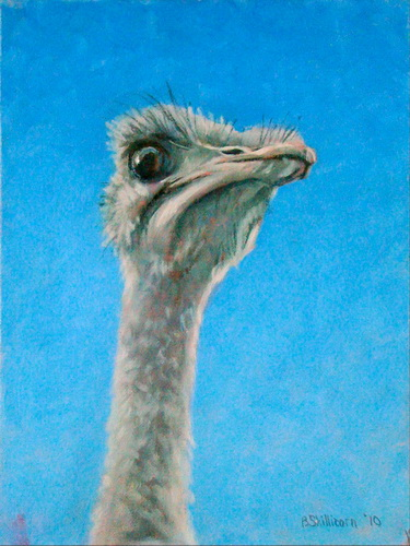 Ostrich with Attitude